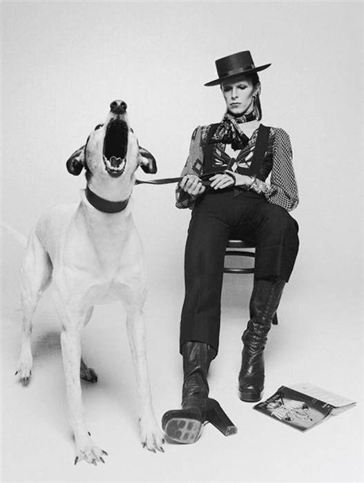 David Bowie for the Diamond Dogs album cover, 1974